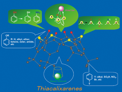The functional molecule thiacalixarene, which can recognize a range of metallic ions and organic molecules through functional group transformation